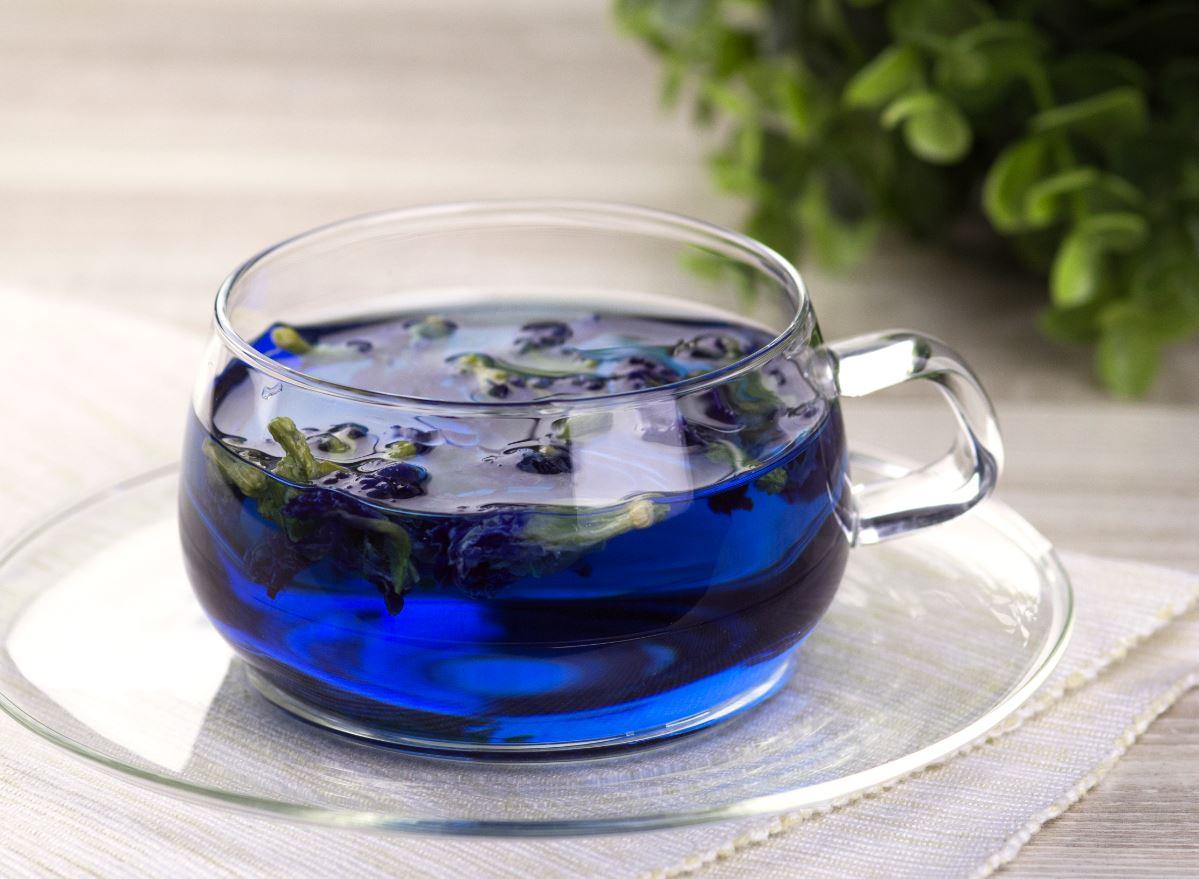 синий чай можно беременным
