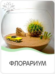 флорариум выездной мастер-класс